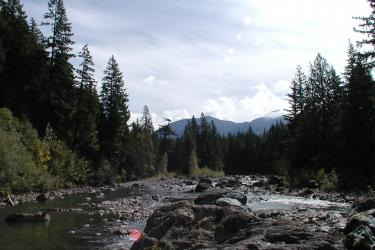 Spectacular view of the river, mountains, forests, and occasional wildlife like deer, elk, bear, osprey and hummingbirds!