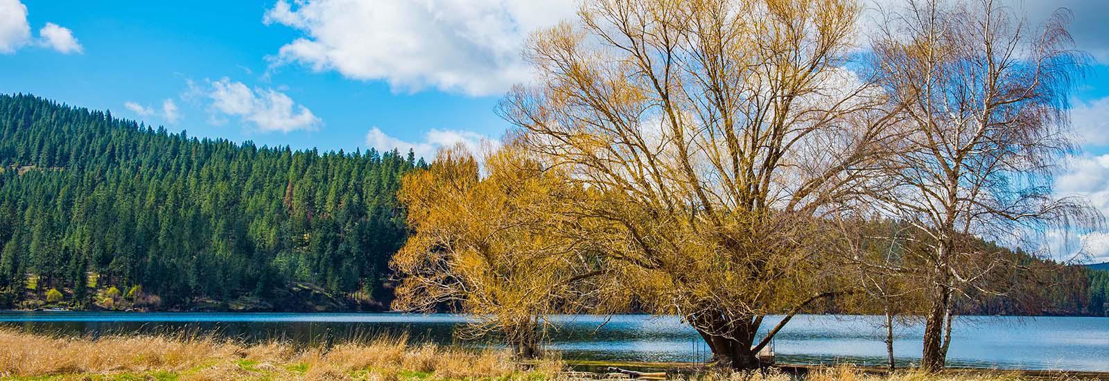Spokane Lake